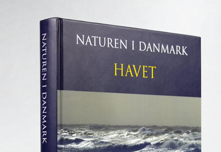 Bogdesign Havet